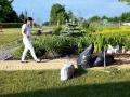 Prace porządkowe w przedszkolnym ogrodzie, wolontariat ogrodniczy